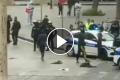 Esercito e multe solo per gli italiani, immigrati in libera uscita alla faccia nostra e delle regole [Video]