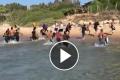 Questa è l'italia della sinistra e dell'Europa  Quaranta tunisini sbarcano sulla spiaggia del commissario Montalbano. I bagnanti scappano [Video]