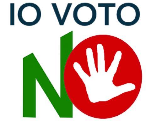 """Referendum 2020, il taglio dei parlamentari è pura demagogia grillina """"Io voto no"""""""