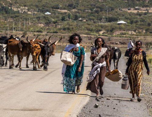 Etiopia, lo schifo supera l'immaginazione: stupri di bambine e cadaveri lasciati per strada. Testimonianza choc di una suora
