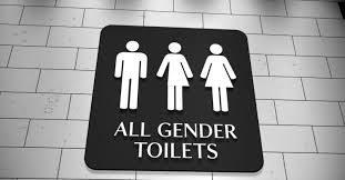 Ddl Zan, nel Lazio la rivoluzione che chocca l'Italia: a scuola introdotti i bagni per trans