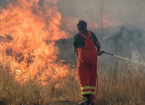 Gli incendi si espandono a macchia d'olio: vittime in Calabria e in Sicilia: Aspromonte e Madonie continuano a bruciare