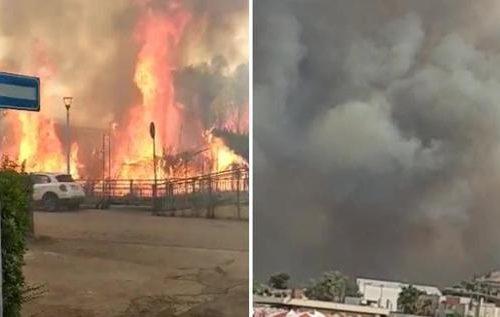"""Pescara brucia, in fiamme la Pineta Dannunziana. Marsilio: """"C'è la mano dell'uomo"""" (Video)"""